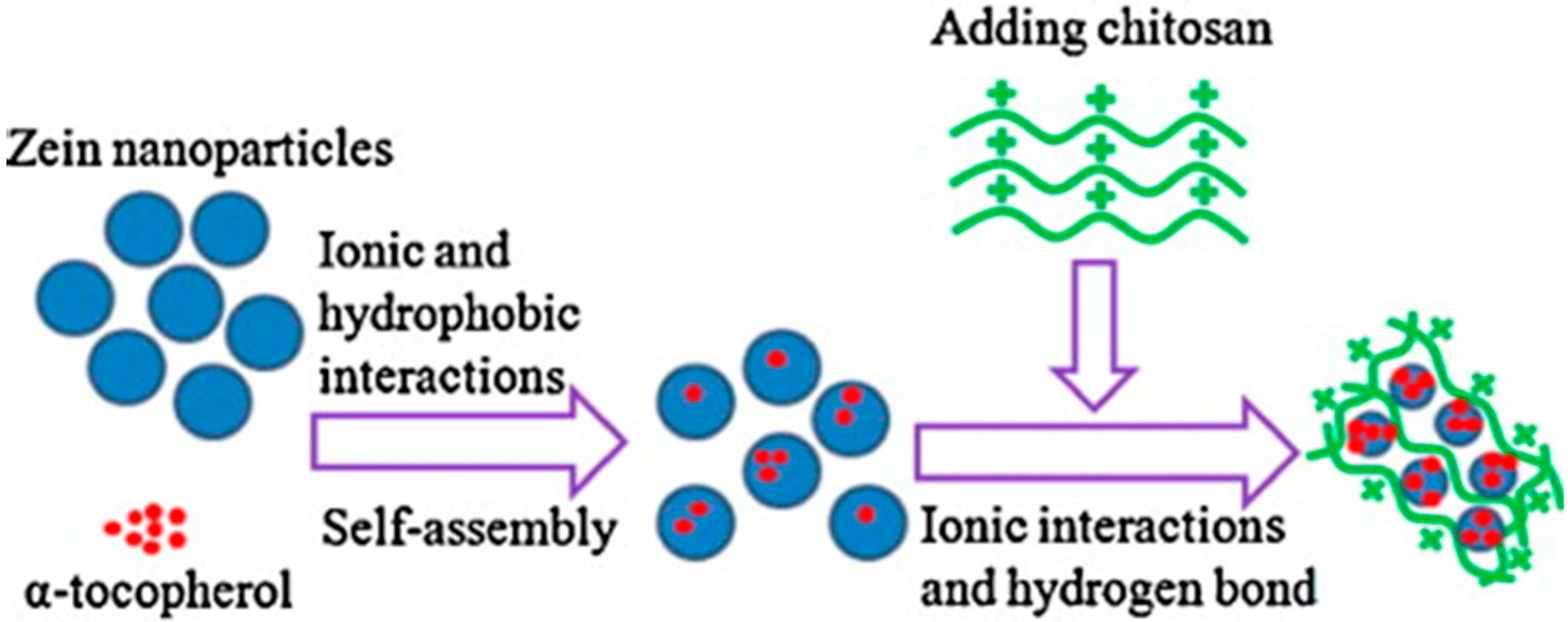 biocompatible materials and its applications