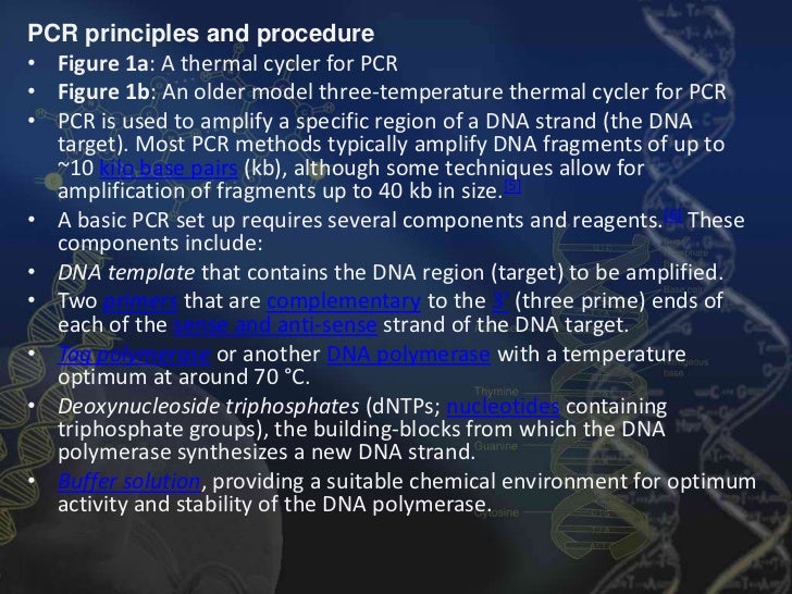 pcr applications in ancient dna
