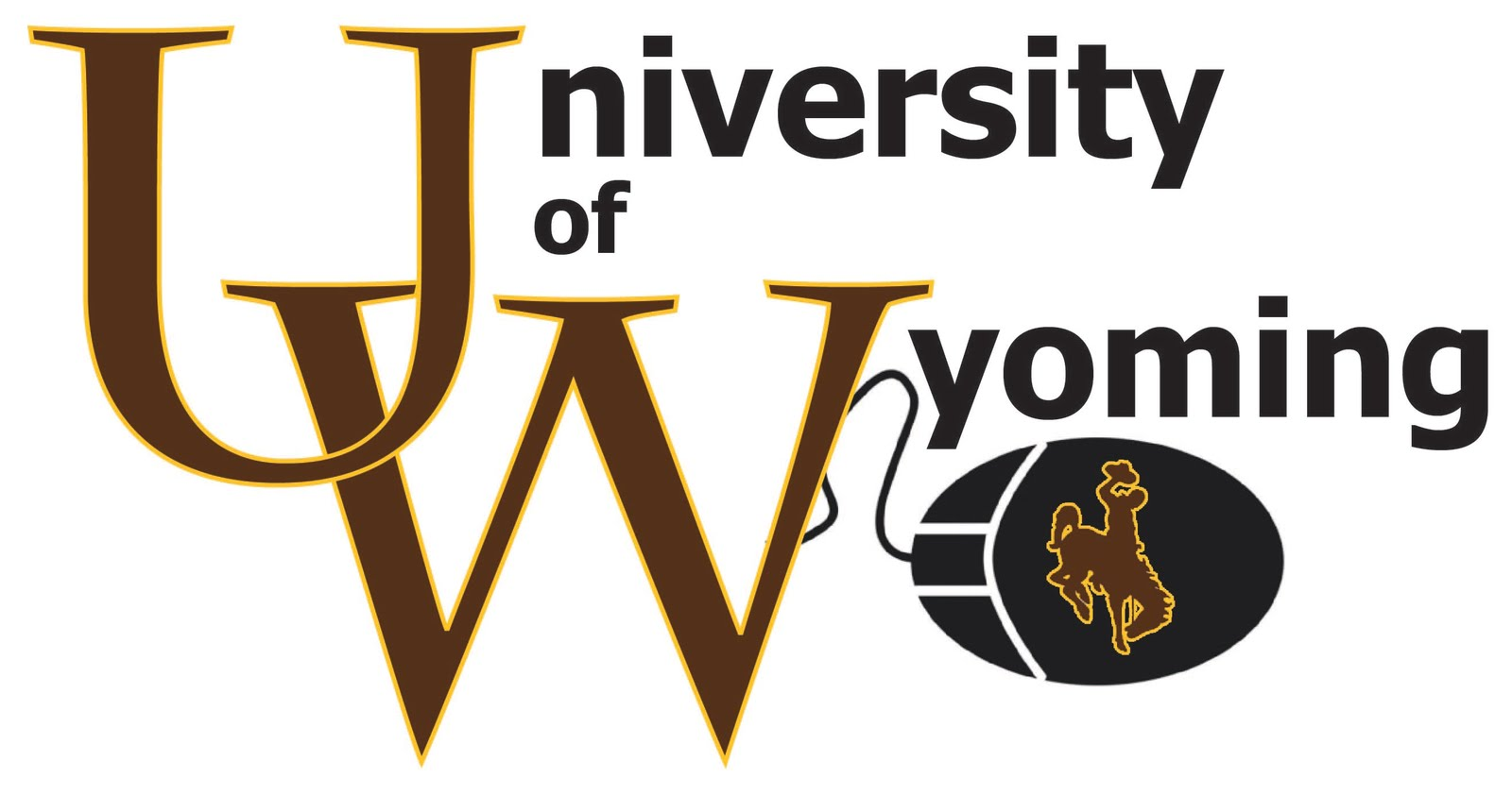 university of wyoming application requirements