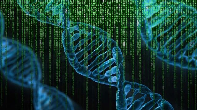 human genetics concepts and applications answers