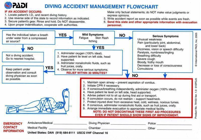 https www.bluecard.qld.gov.au pdf flowcharts flow-chart-blue-card-application