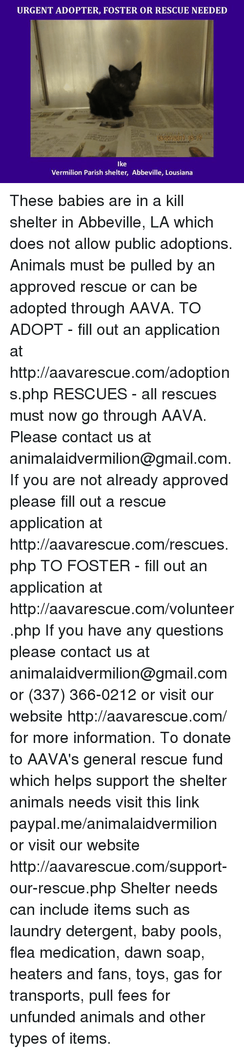 application does not have a main type